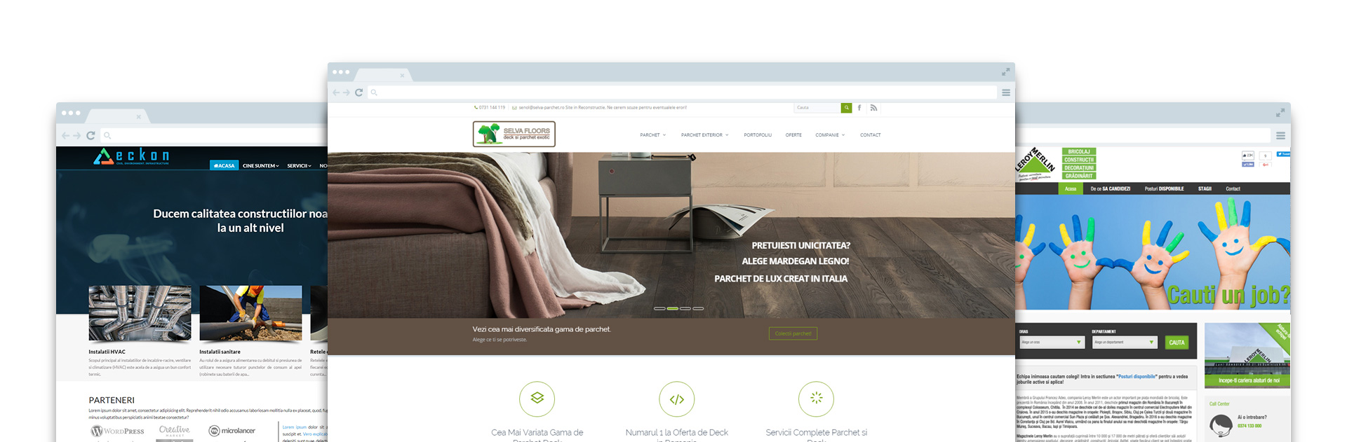 lucrari-web-design